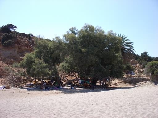 Nero_beach_Kato_Koufonissia2.JPG